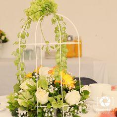 brunch francs jaula flores decoracin romntica vintage fotografa toluca