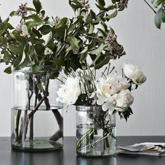 Glass Cylinder Vases for flower arrangements. My Flower, White Flowers, Beautiful Flowers, White Peonies, Fresh Flowers, Ikebana, Glass Cylinder Vases, Clear Vases, Glass Vase