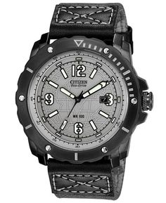 Citizen Eco-Drive Military BME Gray Dial Watch