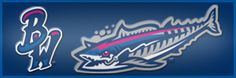 The Blue Wahoos