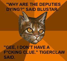 Die 49 Besten Bilder Von Warrior Cat Memes In 2019 Warrior Cat