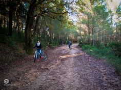 Meet the #nature in #Attica ! #mtb #adventure #travel #cycling