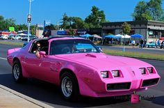 pink, pontiac, trans am, car, auto, vehicle, photography,  card, print, canvas, vintage, classic, (title: Ginny)