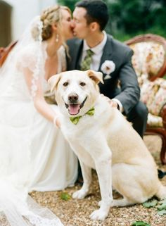 The whole family - dog in the cutest green bow tie | #weddingphotos {Jodi Miller Photography}