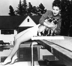 Ava Gardner, siamese cats So much in common here.  My siamese cats also like to hang out on diving boards near our poolQ
