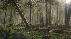 Jurassic Chinese forest - Planet Dinosaur Wiki