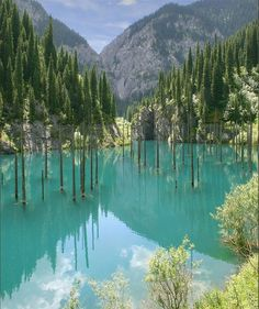 One of the most outstanding values is nature. Lake Kaindy, Kazakhstan: The lake was created as the result of an enormous limestone landslide, triggered by the 1911 Kebin earthquake.