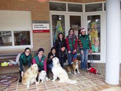 Perros y guias, colegio educación especial, Navidad 2013 (Ontinyent)