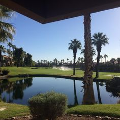 Nice to wake up to this scene on the first day of #EY's Strategic Growth Forum #sgfus