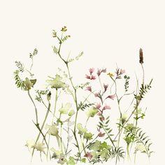 Digital printing – Watercolor Art Print Wild Flower Meadow – a unique product by dearpumpernickel on DaWanda