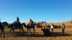 Excursions and #MoroccoDayTours  will encourage you to select your performance and things to do in Agadir while on your holiday with your family and friends.