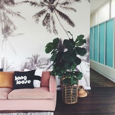 hang loose + palmy sundae•  custom printed wallpaper •