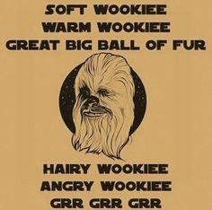 O...m...g! My inner geek just burst into nerdgasmic flames!!!!! Soft Wookie BBT Sheldon <3