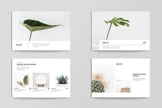 A fully editable postcard template with 4 different layout styles and 2 front/back page designs. Postcard Layout, Postcard Template, Postcard Design, Flyer Template, Web Design, Book Design, Layout Design, Graphic Design, Mise En Page Web