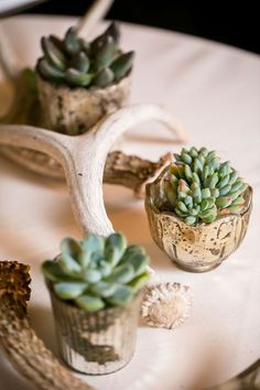 Succulents in tiny mercury glass votives alongside branch and antlers. | See more of this lovely #wedding here: http://www.mywedding.com/articles/aj-and-kelseys-lake-oswego-or-wedding-by-powers-photography-studios/