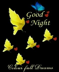 Good night sister and yours, have a peaceful sleep, Good Night Honey, Good Night For Him, Good Night Sister, Lovely Good Night, Good Night Flowers, Good Night Baby, Good Night Sleep Tight, Good Night Prayer, Good Night Blessings
