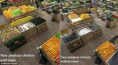 produce choices with bees and without