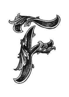 Leaf Script F Art Print