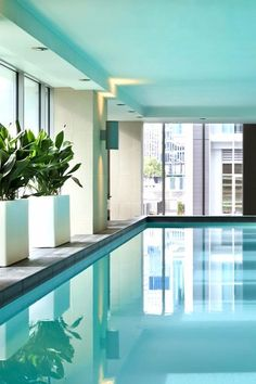 After a day of sightseeing, book a massage in the spa or take a dip in the hotel's pool. Sofitel Auckland Viaduct Harbour (Auckland, New Zealand) - Jetsetter
