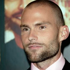 Go Ahead, Shave Your Head: Seann William Scott Shaved Head