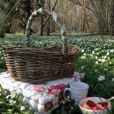 Beautiful Friend, Picnic, Basket, Outdoor, Outdoors, Outdoor Games, Outdoor Living, Picnics, Hamper