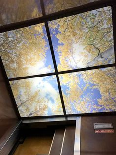 These printed ceiling tiles are available in and options to fit into your suspension grid system. The beautiful nature scene image is printed on PVC or polycarbonate light lense, depicting the warm autumn leaves and cool blue sky with clouds. Accent Ceiling, Sky Ceiling, Tin Ceiling Tiles, Ceiling Decor, Gift Shop Displays, Beautiful Nature Scenes, Tile Crafts, Clinic Design, Decorative Mouldings