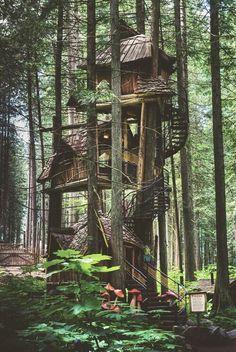 Treehouse, British Columbia