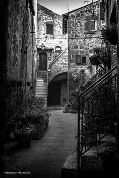 L'antico borgo  g.  di Barbara Manciulli  13 ago 17