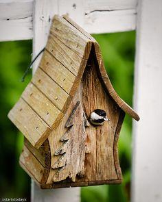 Chickadee Birdhouse 1 by xstartxtodayx, via Flickr