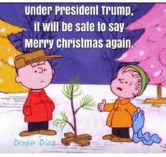 DIxon Diaz is a goddamn idiot and a liar. Dixon Diaz, Our President, God Bless America, First Nations, Have Time, We The People, Charlie Brown, Merry Christmas, Christmas Blessings