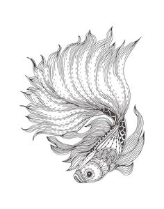 12 Coloring Pages To Destress On Election Night Pattern Coloring Pages, Free Adult Coloring Pages, Coloring Book Pages, Fish Drawings, Outline Drawings, Art Drawings, Mandala Art, Sea Life Art, Coloring Pages Inspirational