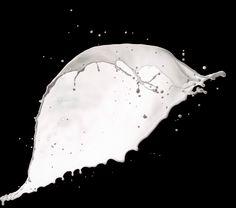 """Hier kommt der zweite Teil zu unserem """"Milch-Set"""": Große Splashes. Während das erste Set eher für Produkte und ähnliches gedacht war, dreht sich hier alles um lebensgroße Splashes. Um die Frage gle..."""