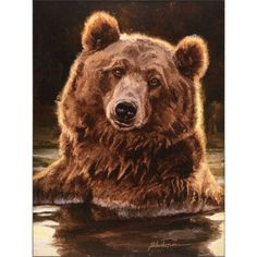 Grizzly bear garden flag depicting a close-up look at a the face of a huge bear while he is wading across the water. Don't let the gentle, playful look on this Grizzly's face fool you. Canvas Frame, Canvas Wall Art, Urso Bear, Animals And Pets, Cute Animals, Wild Animals, Outdoor Flags, Outdoor Decor, Love Bear