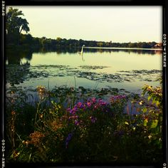 Lake of the Isles , Uptown, Minneapolis  (2011) / Uptown Minneapolis, Minnesota