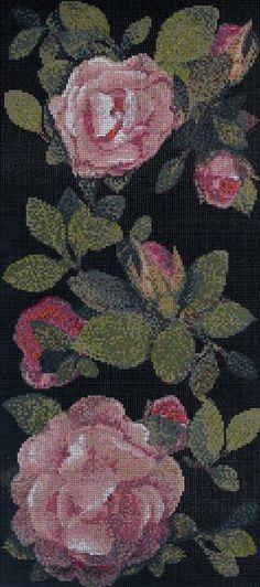 spring rose Bisazza
