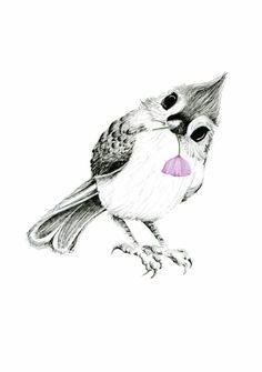 10 Cutest Bird Tattoos For Women - # For # Cutest # Birds . - 10 cutest bird tattoos for women # sweetest # birds - Bird Tattoos For Women, Tiny Bird Tattoos, Cute Tattoos, Body Art Tattoos, Drawing Tattoos, Tattoo Women, Blue Bird Tattoos, Blue Jay Tattoo, Feather Tattoos