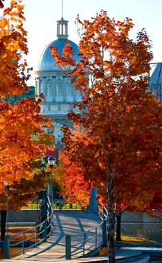 Stock Photo - Autumn Old Montreal Bonsecours Market building Old Montreal, Montreal Ville, Montreal Quebec, Quebec City, Places Around The World, Travel Around The World, Around The Worlds, O Canada, Canada Travel