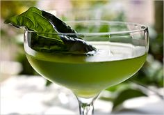 Live Basil Gimlet (basil leaves, gin, lime juice, simple syrup). Photo: Andrew Scrivani for The New York Times