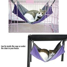 Petneces Hanging Cat Hammock Waterproof Oxford Fabric Cage Bed Mat for Little Animal  2 in 1 SummerandWinter  Easy to Attach to a Cage Blue ** Need to know more, click on the photo. (This is an affiliate link). Pet Hammock, Hanging Hammock, Hammock Stand, Dog Cages, Pet Cage, Ferret Cage, Cat Training Pads, Cat Shedding, Cat Dog