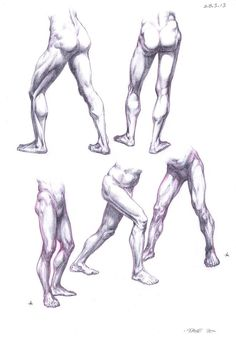 Anatomy Studies ✤ || CHARACTER DESIGN REFERENCES | キャラクターデザイン Find more at https://www.facebook.com/CharacterDesignReferences if you're looking for: #lineart #art #character #design #illustration #expressions #best #animation #drawing #archive #library #reference #anatomy #traditional #sketch #development #artist #pose #settei #gestures #how #to #tutorial #conceptart #modelsheet #cartoon || ✤