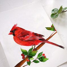 Cardinal Watercolor Kit with Step by Step Tutorial. Perfect project for Christmas cards and seasonal decor. Blow your family away this year using your own hidden artistic talent! Paint your birds today. Watercolor Beginner, Watercolor Paintings For Beginners, Watercolor Art Diy, Step By Step Watercolor, Watercolor Projects, Watercolour Tutorials, Let's Make Art, Love Painting, Learn To Paint