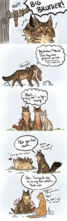 This is one of the BEST Warrior art. It's adorable and Funny. #BrambleClaw (Brother Issues by AnnMY)