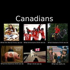 lol canadian stereotypes at its best lol. Minus the maple syrup and a beaver or two lols. Some people actually think we live in igloos up here Canada Jokes, Canada Funny, Canada Eh, Canadian Things, I Am Canadian, Canadian Humour, Canadian Memes, Canadian Bacon, Canadian Stereotypes
