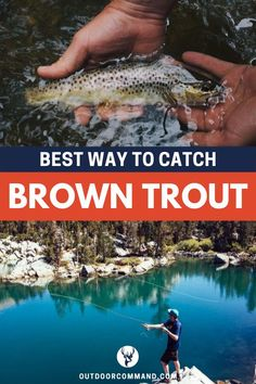 Best Way to Catch Brown Trout. There is an art to fishing if you want to have the most enjoyable time and catch the trout. We've got some great tips to help you know exactly the best way to catch that brown trout you're after. Read all about it today! Fishing Life, Sport Fishing, Best Fishing, Women Fishing, Fishing Rods, Trout Fishing Tips, Walleye Fishing, Fishing Tricks, Carp Fishing