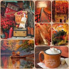 October Mood Board♥♥♥ Wish we had longer Fall Season! Decoration Buffet, Autumn Scenes, Autumn Aesthetic, Autumn Cozy, Fall Pictures, Hello Autumn, Autumn Inspiration, Autumn Ideas, Fall Harvest