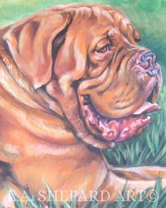 """A Dogue de Bordeaux dog art portrait print of an LA Shepard painting 11x14"""". Here's a wonderful tribute to your best friend and favorite breed- the Dogue de Bordeaux! from an original painting by L.A.Shepard, whose unique, beautiful work has been collected around the world. Your print will be individually signed under the image by the artist, and initialed on the image. Copyright text is for display purposes only and will not appear on your artwork. The image is 11x14 inches and is…"""