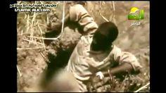 رجل يقتل ثعبان البايثون الأصلة العملاقة بطريقة جريئة !!! سبحان الله Man kills boa snake - YouTube