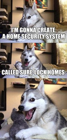 Bad Pun Dog | I'M GONNA CREATE A HOME SECURITY SYSTEM CALLED SURE-LOCK HOMES | image tagged in memes,bad pun dog | made w/ Imgflip meme maker