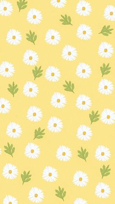 Daisies wallpaper Iphone - Best of Wallpapers for Andriod and ios Daisy Wallpaper, Soft Wallpaper, Flower Phone Wallpaper, Spring Wallpaper, Cute Patterns Wallpaper, Iphone Background Wallpaper, Aesthetic Pastel Wallpaper, Kawaii Wallpaper, Tumblr Wallpaper