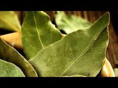 Natural Remedies, Health And Wellness, Plant Leaves, Plants, Islam, Youtube, Jewerly, Masks, Health Fitness